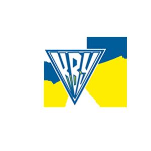 "Rivne Region Public Organization ""Committee Of Voters Of Ukraine"""